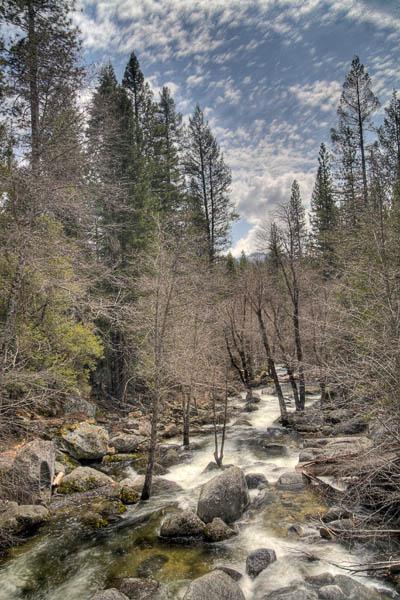 2006-04-21 Yosemite_MG_2260 copy