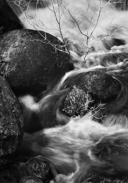 2006-04-21 YosemiteCRW_8007