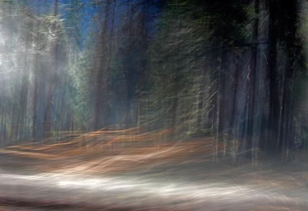 2006-10-28-Yosemite_MG_5962