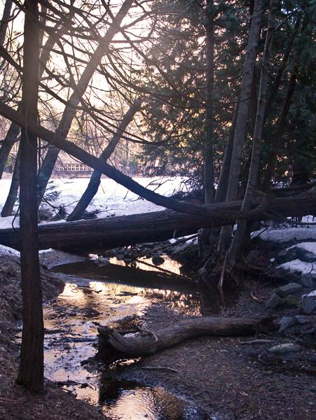 2008-03-03_2--Yosemite-1015