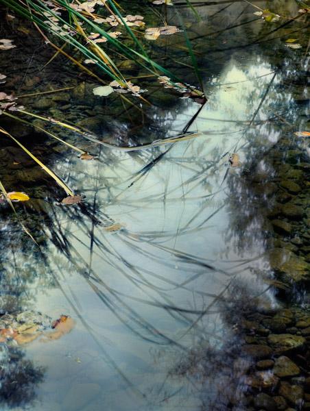2008-10-19-Sunol-8243H