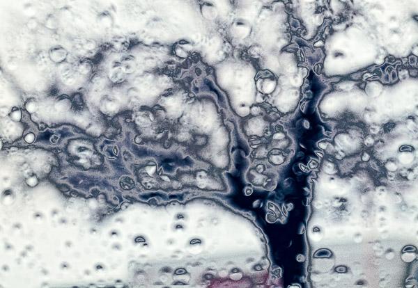 2009-02-15-misc-0899