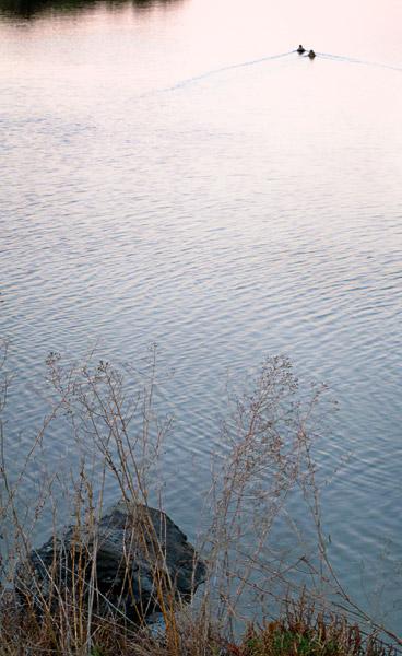 2008-11-20-Don-Edwards-0248