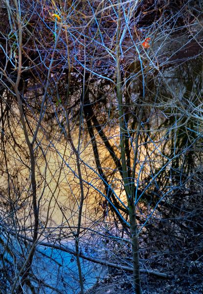 2009-02-26-Sunol-0390H.jpg