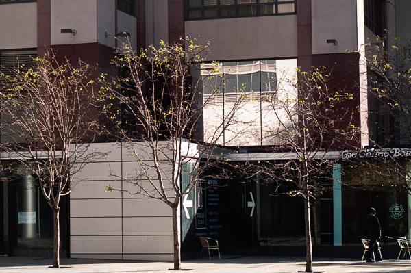 2009-04-20-Misc-1172.jpg