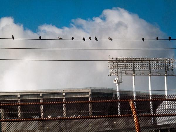 2009-03-09-Misc-0960.jpg