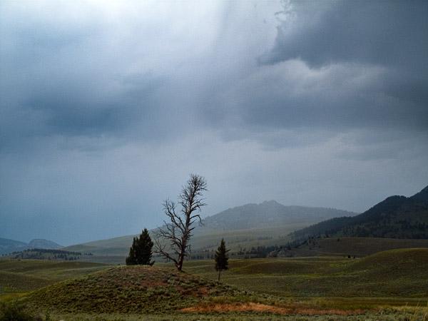 2009-08-03-Yellowstone-1732.jpg
