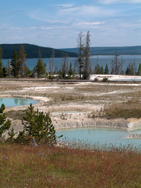 2009-08-03-Yellowstone-1666.jpg