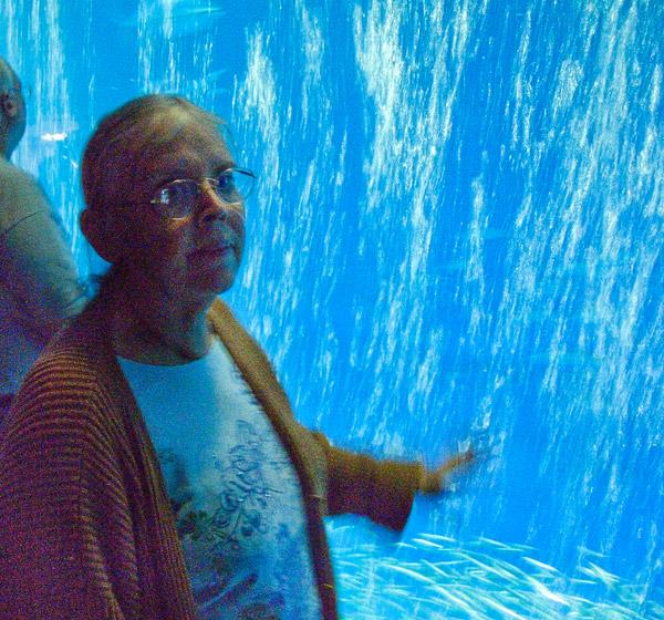2009-10-01-Monterey-1909.jpg