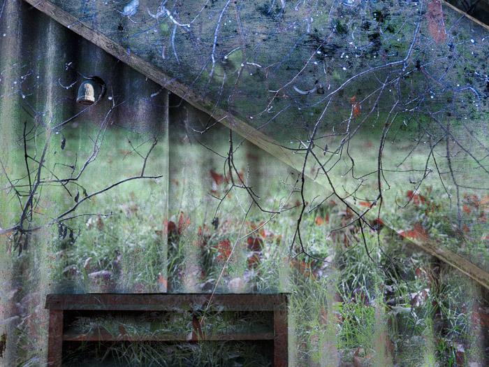 2009-10-01-Monterey-1903C.jpg
