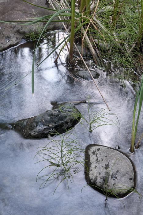 2010-06-20-Sunol-3779.jpg