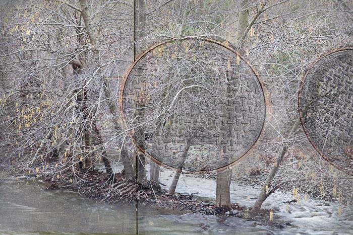 2010-01-24-Sunoll-1782C.jpg