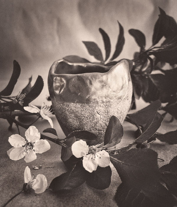 2012-03-07-Vase-1020639.jpg