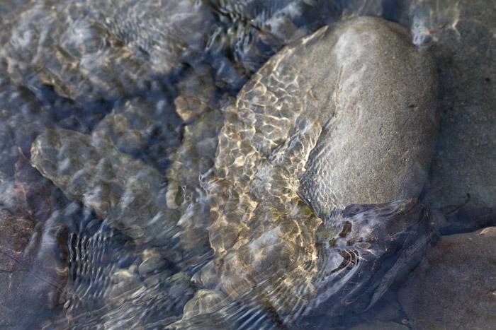 2012-03-18-Sunol-2345.jpg