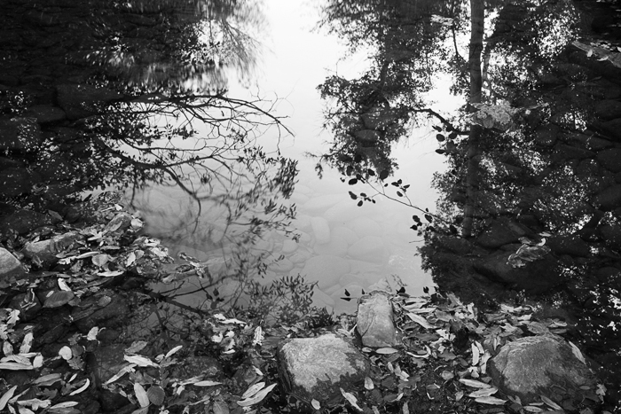 2011-10-27-Sunol-8737.jpg
