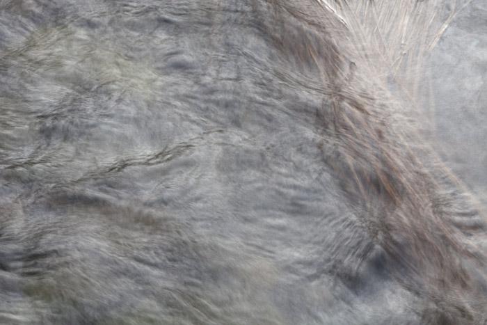 2012-03-19-Sunol-2473.jpg