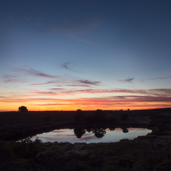 2012-09-24-Pt-Reyes-00520.jpg