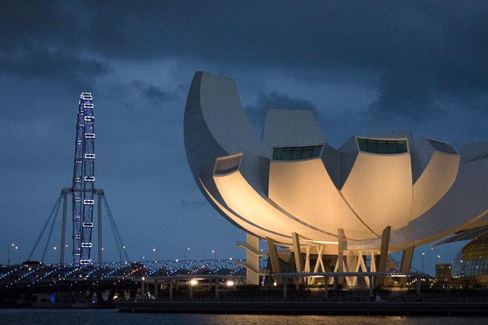 2013-03-01-Singapore-Night-Tour-2113.jpg