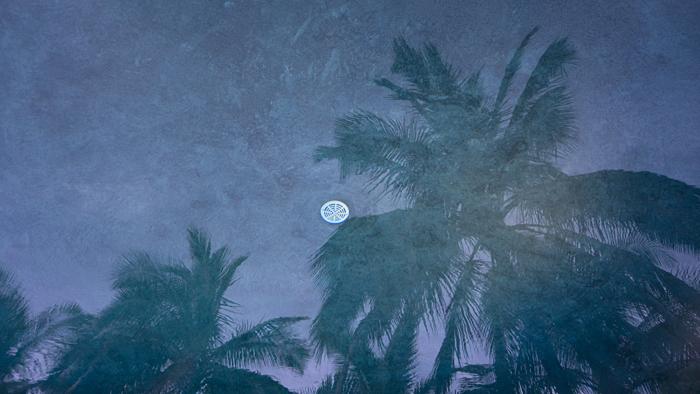 2013-11-05-Hawaii-1767.jpg